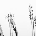"""<1時間のLive動画有> ギターが4人いるバンド """"Broken Social Scene"""""""