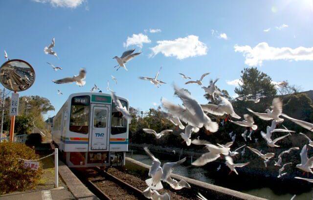 【冬限定の映えスポット】ゆりかもめの駅と呼ばれる「浜名湖佐久米駅」