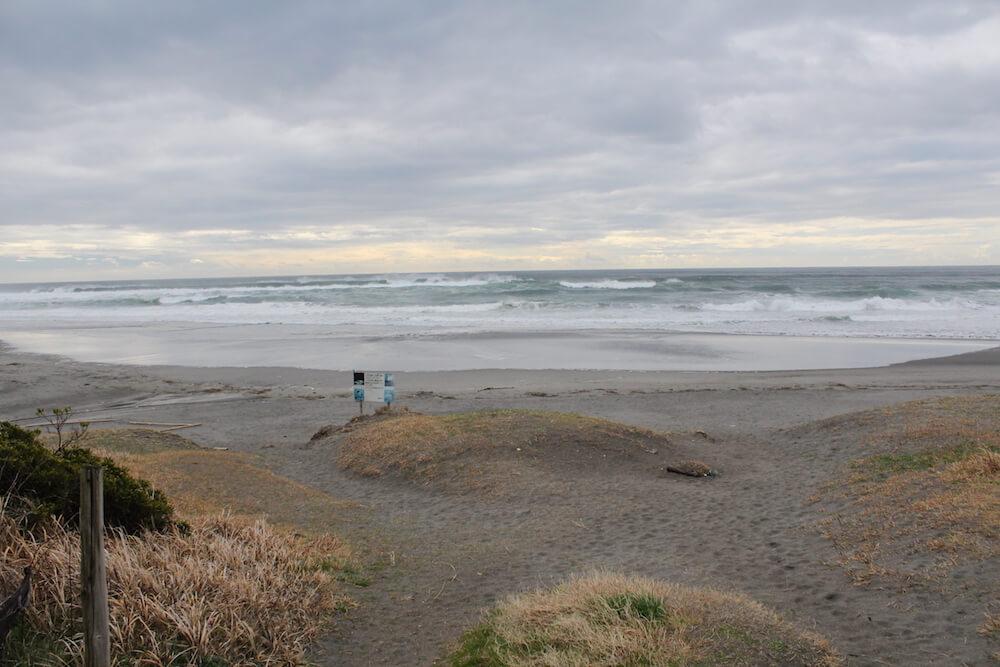 遠州灘の画像