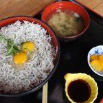 静岡最西端の道の駅「潮見坂」の「しらす丼 」がウマウマ ♪