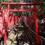 【浜松で味わう京都】伏見稲荷感のある三ヶ日町「璽田稲荷神社」
