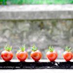 現役秘書が選ぶ浜松土産。浜松都田まるたか農園産のトマトジュース「朝からキレイ」