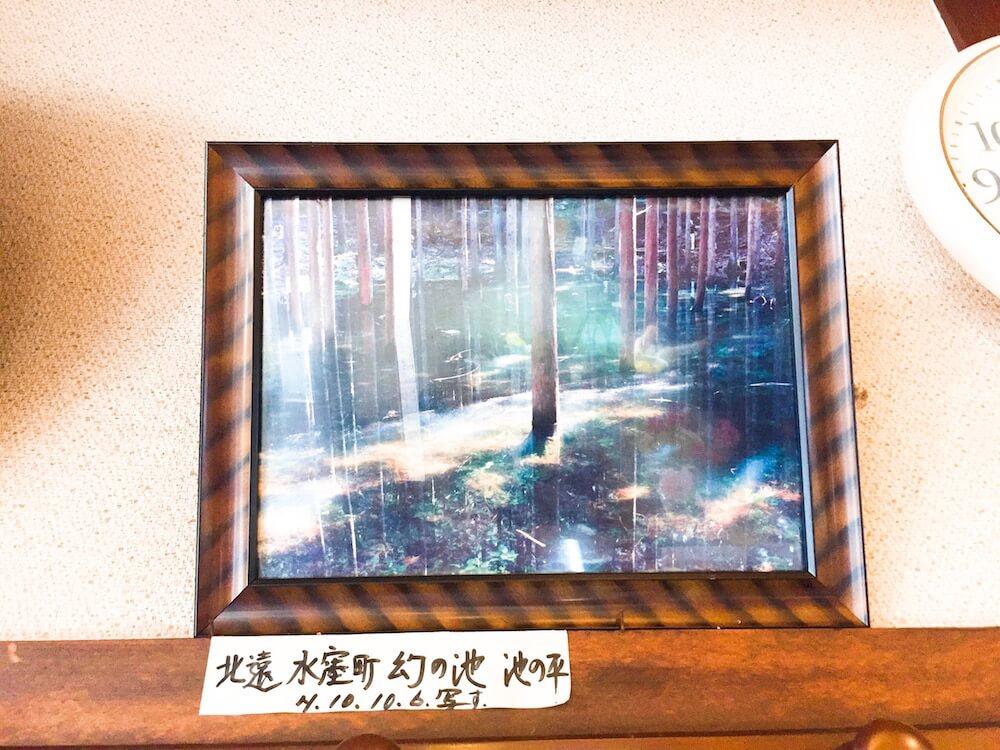 幻の池の画像